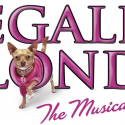 Want to be in Legally Blonde in Beverley
